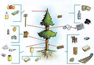 Máquinas de carpintería de segunda mano: la excelencia de la madera